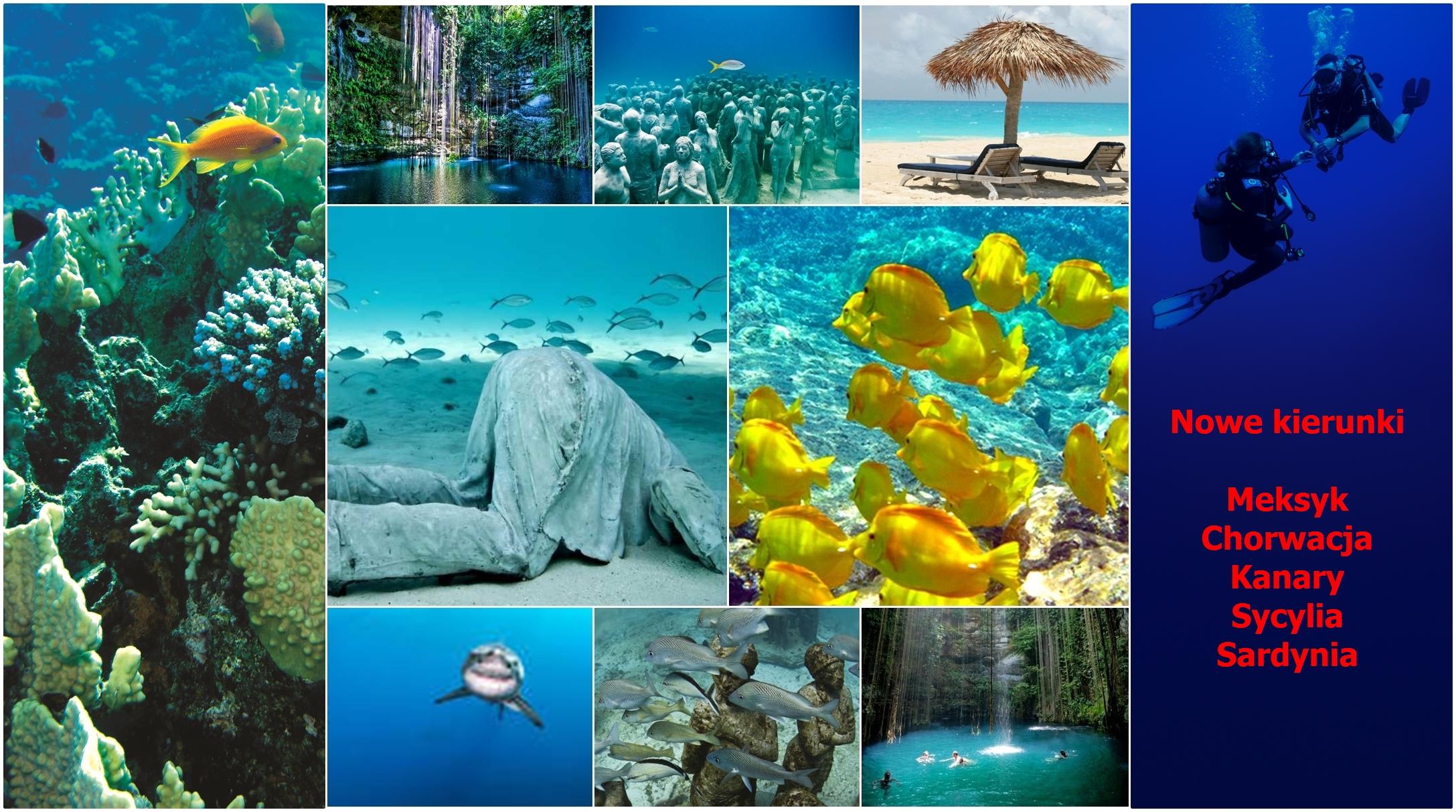 nurkowanie w Chorwacji, Kanarach, Meksyku, Sycylii, Sardynii