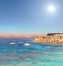 red_sea_coral_reefs