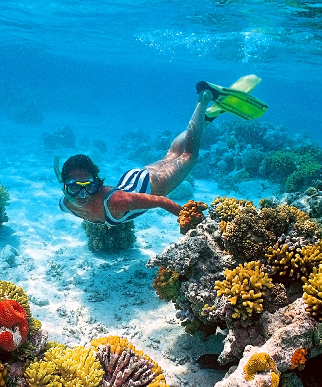 snorkeling w Egipcie, Sharm